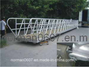 Solas Aluminium Special Gangway for Sale, Marine Embarkation Ladder pictures & photos