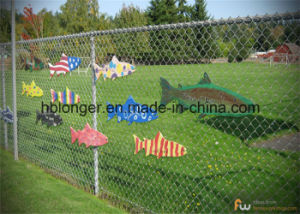 PVC Coated Chain Link Iron Wire Mesh/Galvanized Wire Netting pictures & photos
