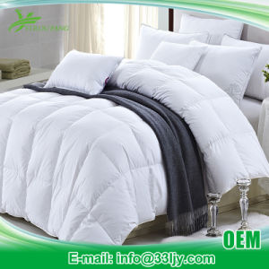 Soft Double Cheap Quilts and Comforters for Motel pictures & photos