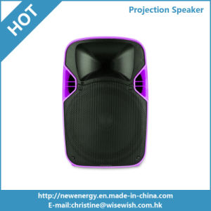 12 Inches PA System Bluetooth Powered Speaker with Projector