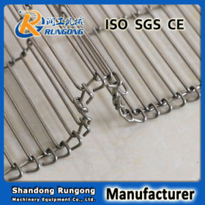Ss302 Stainless Steel Ladder Belt High Temperature Resistance pictures & photos