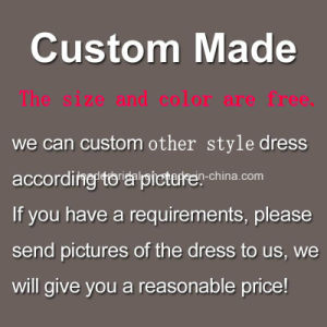 Luxury Evening Party Gowns Beading Arabic Prom Dress Z4018 pictures & photos