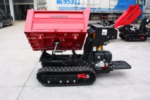 Ant Mini Dumper By800 with Hydraulic Piston Pump Made in USA pictures & photos
