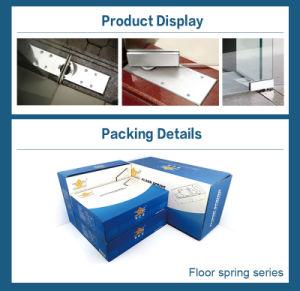 Door Hinge Door Closer Stainless Steel Cover Floor Spring pictures & photos