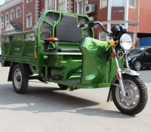 Ce/EEC/Certified Electric Trike Electric Tricycle Cargo