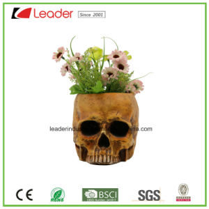 Decorative Hand Painted Skull Planters for Home and Garden Ornaments pictures & photos