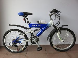 "20"" Steel Frame Mountain Bike (2013) pictures & photos"