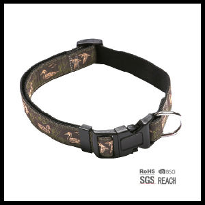 Nylon Webbing Pet Puppy Dog Collar with Woven Logo pictures & photos