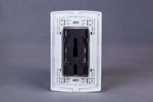 Twin Receptacle pictures & photos