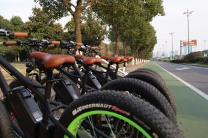 Low Price Beach Cruiser 1000W Electric 26X4 Fat Tyre Bike pictures & photos