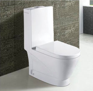 Hot Sale Bathroom Ceramic Washdown One Piece Toilet pictures & photos