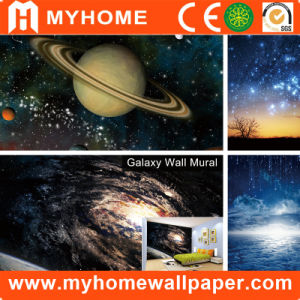 Self Adhesive Photo 3D Mural Wallpaper for Walls pictures & photos
