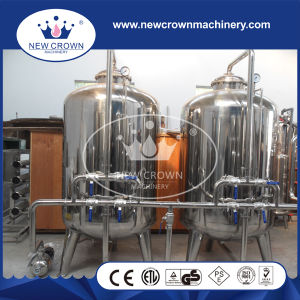 15t/H High Quality Mineral Water Treatment Plant pictures & photos