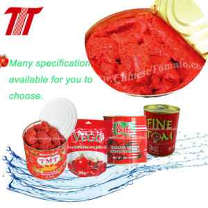 Tomato Paste, Tomato Sauce, Ketchup pictures & photos