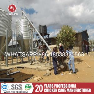 Hot Galvanized Wire Mesh with Q235 International Standard for Algeria Farm pictures & photos