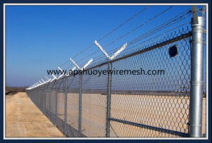 PVC-Coated Wire Chain Link Fence pictures & photos