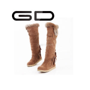 Gdshoe Factory Stylish Polo Winter Fur Boots pictures & photos