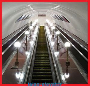 High Quality Low Cost Residential Escalator pictures & photos