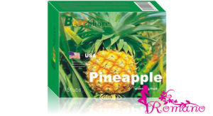 Best Share Pineapple Slimming Fruit (ROMANOY253)