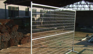 Hot-Galvanized or Elec-Galvanized Temporary Fence (Various Colors) pictures & photos