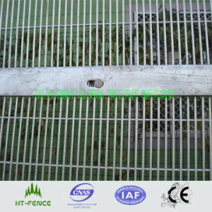 Fence Security pictures & photos