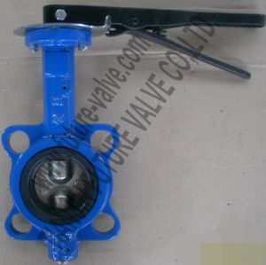 Wafer Pinless Butterfly Valve Dn65 Multi Drilling with Two Stem (D71X-10/16)
