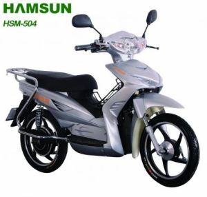 Electric Scooter (HSM-504)