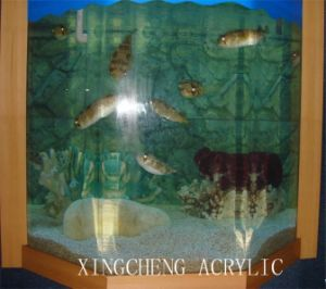 Aquarium Equipment pictures & photos