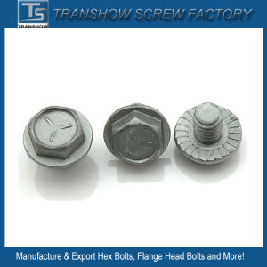 5/16X3/4 Inch Galvanized Hex Flange Screw pictures & photos