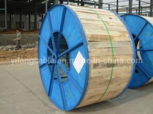 Medium Voltage XLPE Insulated Cable (CU/XLPE/CAS/HDPE) pictures & photos