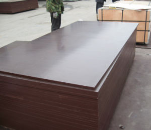 Shuttering Plywood for Slab Concrete Use pictures & photos