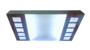 Lighting Ceiling (ALS-LC003)