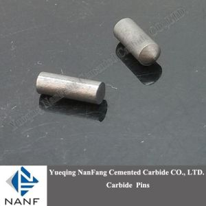 Tungsten Carbide Nail for Shoes
