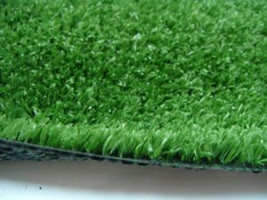 Fake Grass Area Rug, Ideal for Outdoor 001 pictures & photos