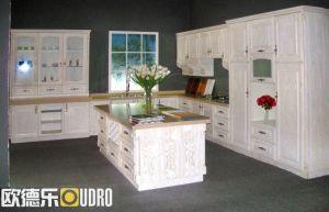 Modern Kitchen Furniture (ODR-K008)