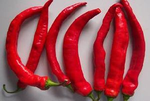 Capsaicin with High Quality on Sell pictures & photos
