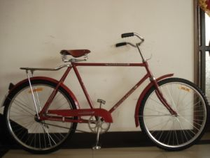 "Beautiful Coaster Brake Classic Bike 28"" Bicycle (FP-TRDB-S003) pictures & photos"