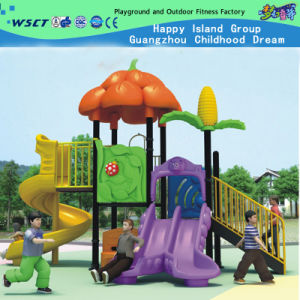 2015 New Design Playground Equipment for Theme Park (HLD-ZS003) pictures & photos