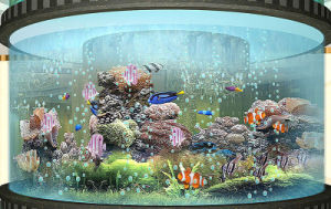 Cylinder Fish Tank pictures & photos