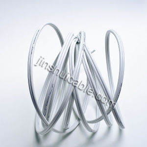 Spt Cable 2X12AWG for South America pictures & photos