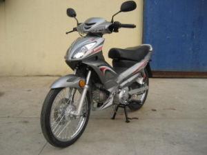 Motorcycle (HN110-2C-4)