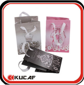 Paper Bag with Silk Handle pictures & photos
