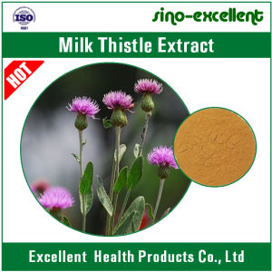 100% Natural Milk Thistle Extract Powder