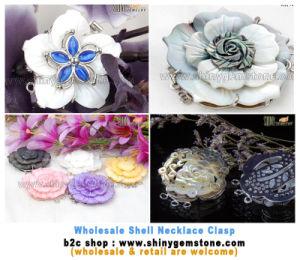 Shell Jewelry Clasp