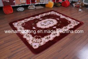 100%Acrylic Raschel Mink Prayer Carpet (NMQ-CPT012) pictures & photos
