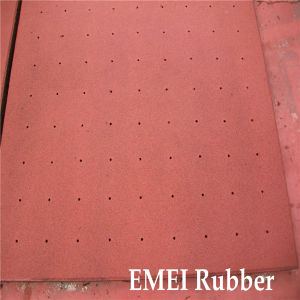 Horse 81 Holes Rubber Floor/Horse Rubber Floor Mat pictures & photos