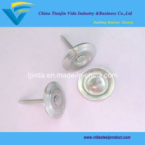 "Metal Round Cap Nails (1/2""-6"") pictures & photos"
