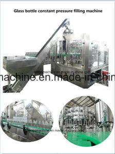 Automatic Beer Glass Bottle Filler Capper Monobloc Filling Bottling Machine pictures & photos