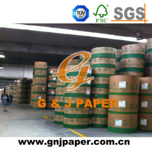 506mm 528mm Width White Coated Paper in Reel for Wholesale pictures & photos