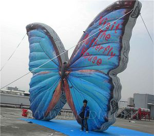 Inflatable Giant Balloon Butterfly (K2052) pictures & photos